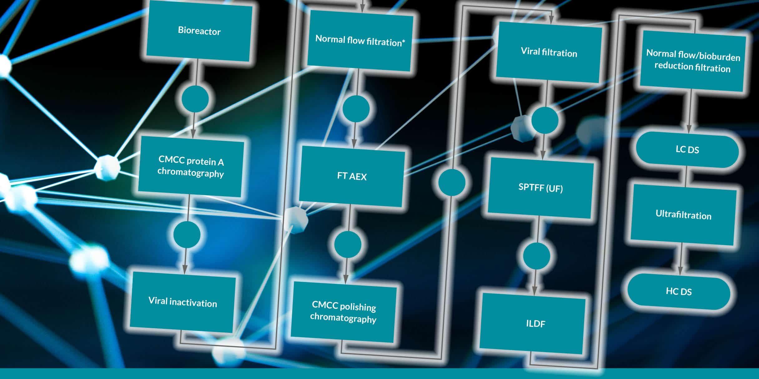 biophorum post images conti processing 75