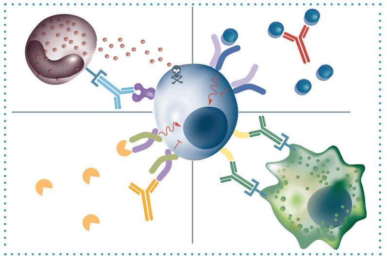 Bioassay development: Best practices in bioassay development to support registration of biopharmaceuticals